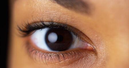 ojos cafes: Primer plano de los ojos marrones Foto de archivo
