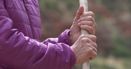 Tight shot of old female hiker holding wooden walking stick in nature