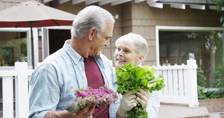 Senior couple smiling with vegetables in garden 版權商用圖片