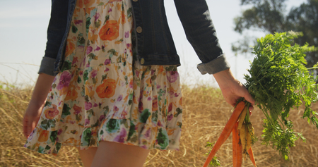 Closup of young caucasian woman walking with vegetables 免版税图像