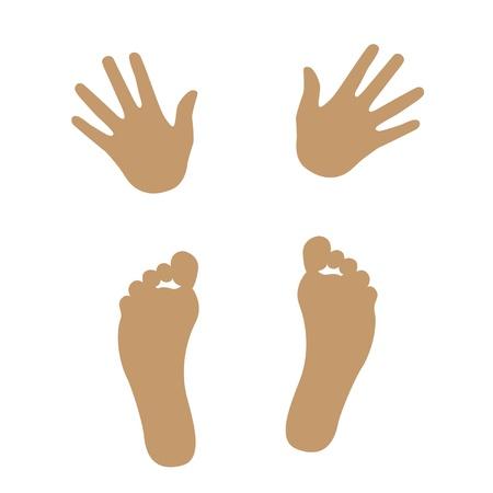 manos y pies: la mano y la silueta del pie