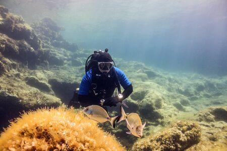 Fish wayching