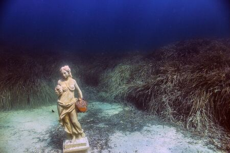 Statue Underwater Фото со стока