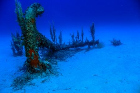 The Old Anchor Фото со стока