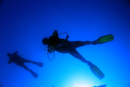 Silhouette of Two Divers