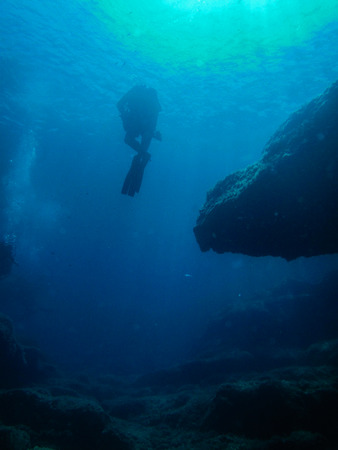Diver and Reef Silhouette