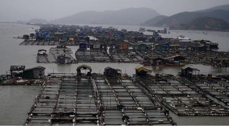 area: Aquaculture area