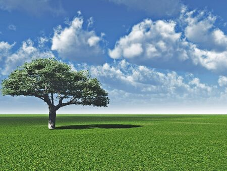 Alone tree and beautiful sky - 3d landscape scene.  photo