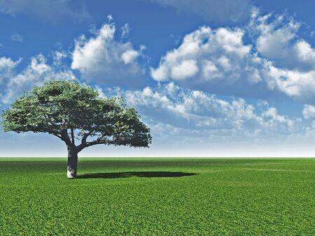 Alone tree and beautiful sky - 3d landscape scene. Stock Photo - 857361