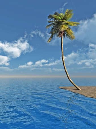 Coconut palms at sand beach - 3D scene.  Stock Photo - 898608