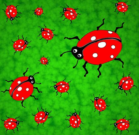 of ladybirds on a green lawn - graphic illustration. illustration