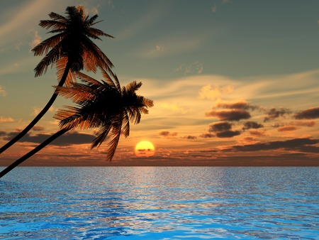 Sunset coconut palm trees on a beach - 3d illustration.  Stock Illustration - 1557831