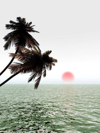 serene: Sunrise coconut palm trees on a beach - 3d illustration.  Stock Photo