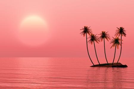 Palms island at sunset sea  photo