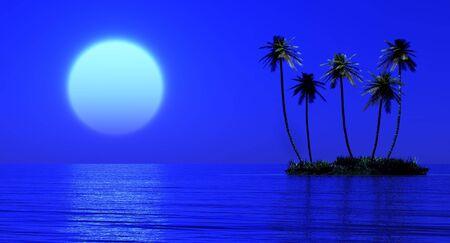 fool moon: Palms island and fool moon Stock Photo