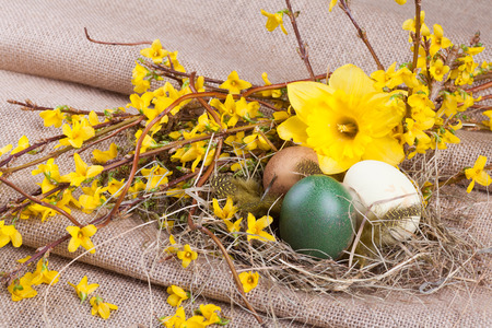 easter decoration with easter eggs, easter daffodil and forsythia branches