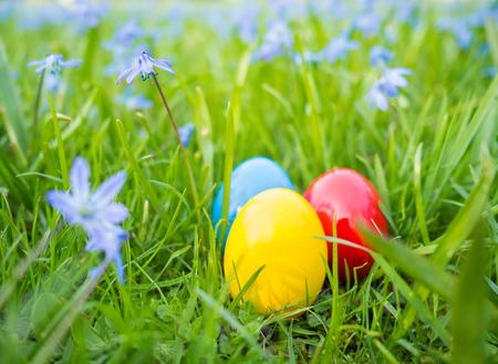 잔디밭에 다채로운 부활절 달걀