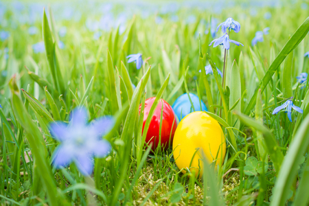 잔디밭에 꽃 사이에 숨겨진 부활절 달걀 스톡 콘텐츠