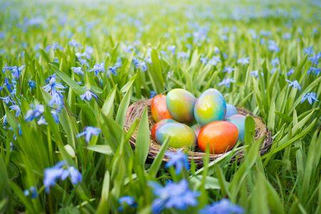 꽃 사이 잔디밭에 다채로운 부활절 달걀와 부활절 바구니 스톡 콘텐츠