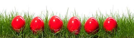 고립 된 잔디에 6 개의 빨간 부활절 달걀