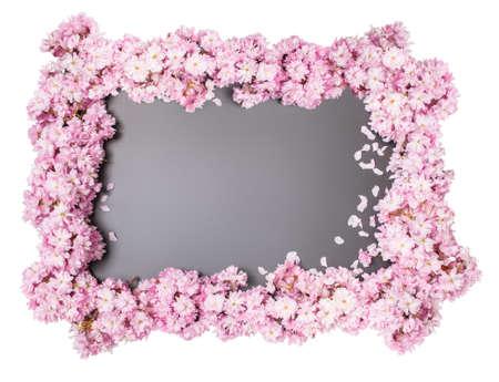 배경으로 봄에서 벚꽃 프레임으로 칠판