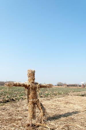menace: Scarecrow in canola flower field