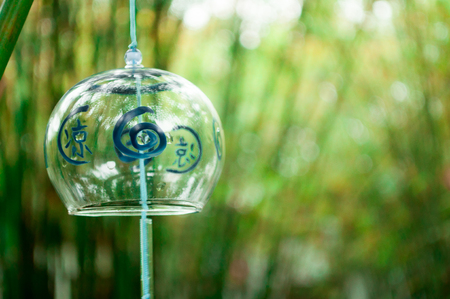 leisurely: Bamboo Campanula