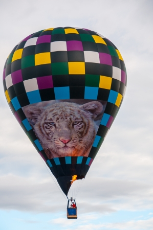 phillip rubino: Decorated hot air balloon rising in the sky
