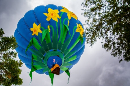 philliprubino: Flower decorated hot air balloon rising through the trees