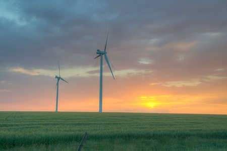 phillip rubino: Wind farm on the plains at dusk