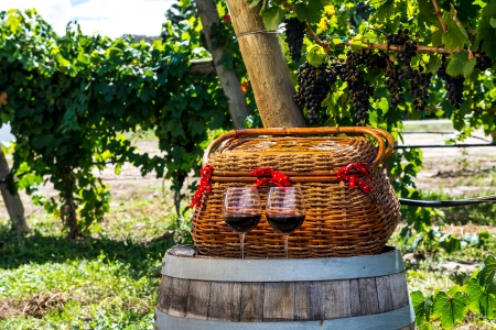 picnic basket and 2 glasses of red wine sitting on wine barrel Stock Photo