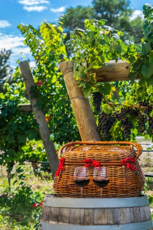 phillip rubino:  wicker basket and 2 glasses of red wine sitting on wine barrel