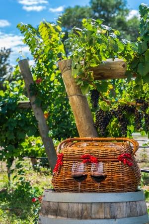 phillip rubino:  wicker basket and 2 glasses of red wine sitting on wine barrel
