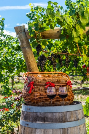 phillip rubino:  basket and 2 glasses of red wine sitting on wine barrel