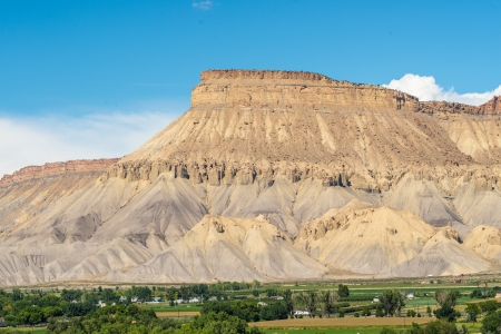 View of Cliff Mesas from Palisades Colorado vineyard at grape harvest on summer afternoon Stock Photo