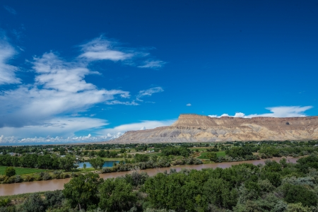 phillip rubino: View of Cliff Mesas from Palisades Colorado vineyard at grape harvest on summer afternoon Stock Photo