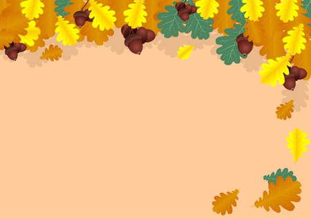 foglie di quercia: Autunno collage di foglie di quercia e ghiande, vector Vettoriali