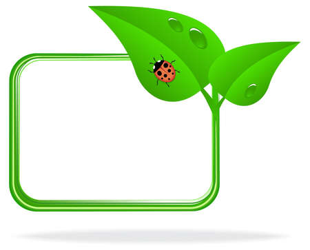 ladybug on a green leaf with dew drops Illustration