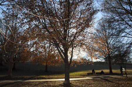 piedmont: Piedmont Park, Atlanta Georgia