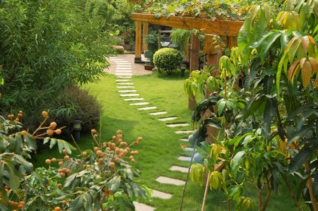 A stone walkway winding its way through a tranquil garden photo