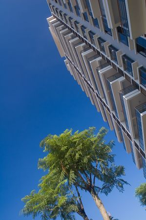 Building and tree under blue sky photo