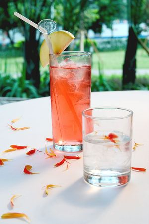 Alcohol  and Fresh Juices drink  at the restaurant Stock Photo - 3705080