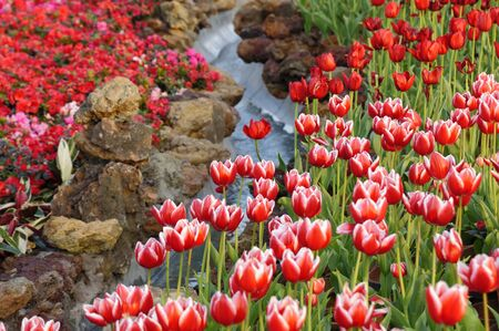 Garden scene with colorful flowers and small water stream Stock Photo - 4304128