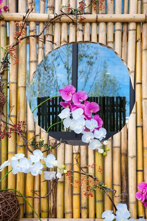 bacca: Moth orchid  on the  bamboo frame wall with   reflecting sky background Stock Photo