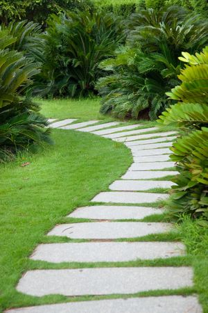 walkway: Foopath through shrubs in the garden