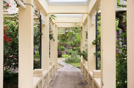Pergola and plant in a garden photo