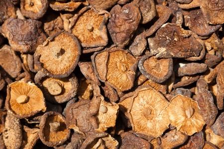 Dried shitake mushroom background photo