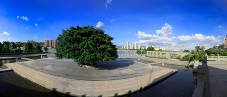 River park with big tree in fuzhou,fujian,China. Panoramas by six pictures photo