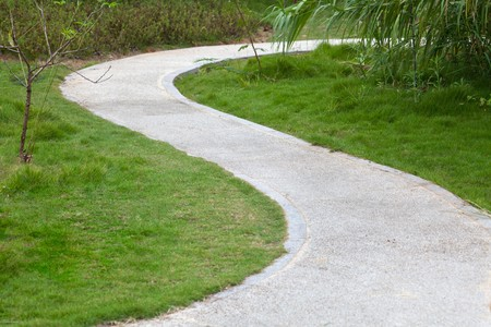 Lawn, reed,small tree, and curved sidewalk around grass. photo