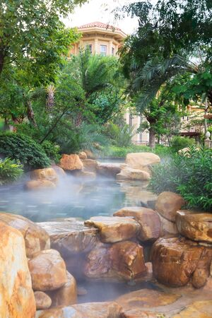 Detail of the Landscaping/gardening around pool featuring water fog and plants in a new residential district